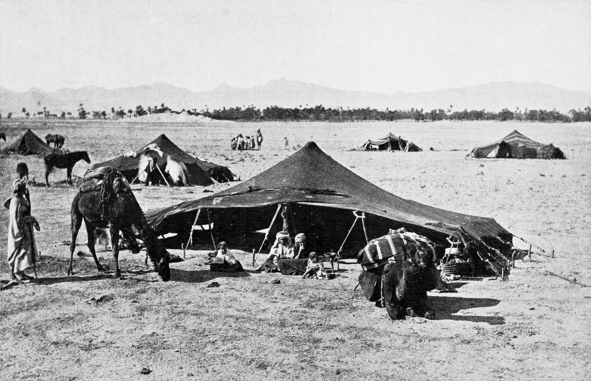 PSM_V52_D609_Bedouin_encampment_in_the_sahara_and_the_atlas_mountains.jpg