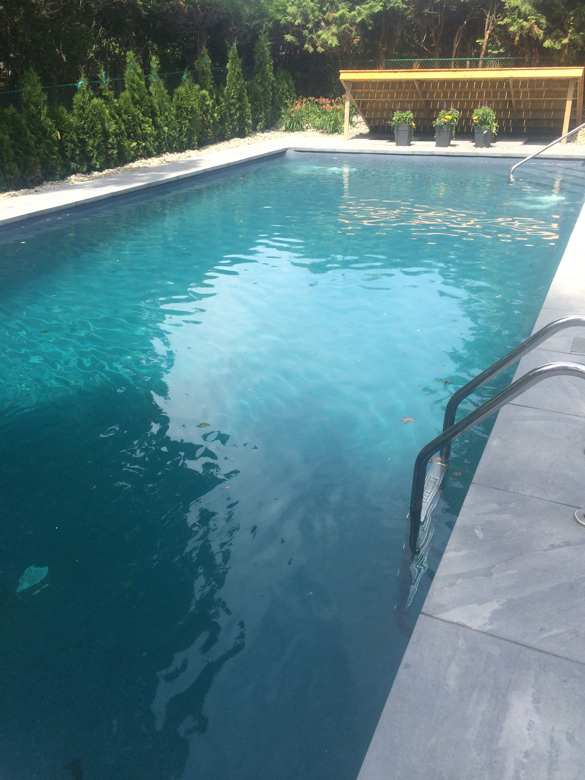 poseidon rectangle pool again.jpg