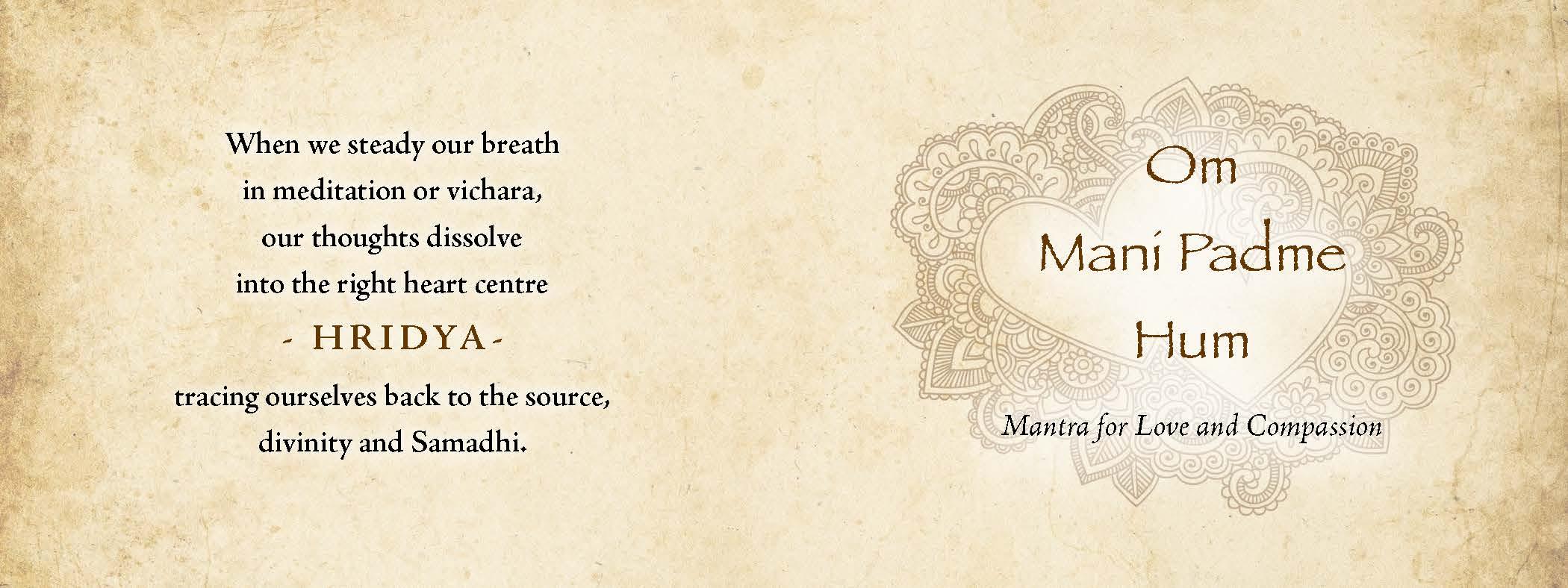 Vyana heart book2 (1)_Page_8.jpg