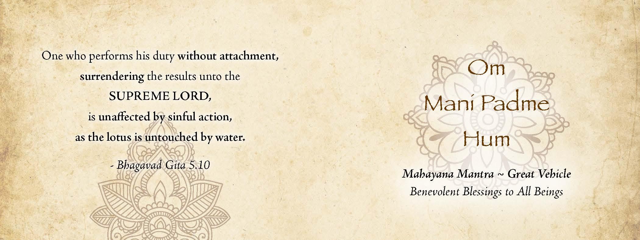 Lotus Vedi book_Page_7.jpg