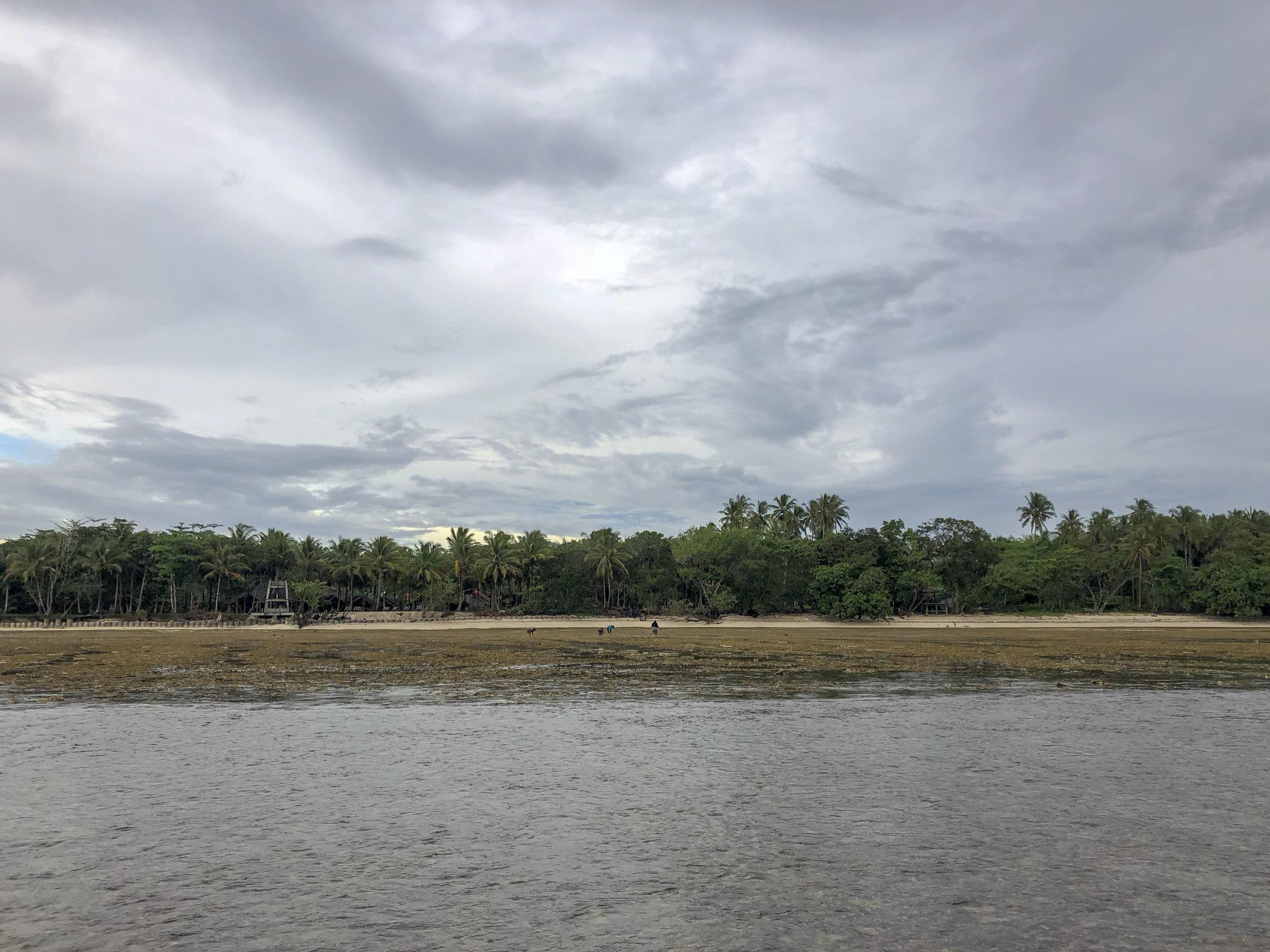 Sumatra low tide
