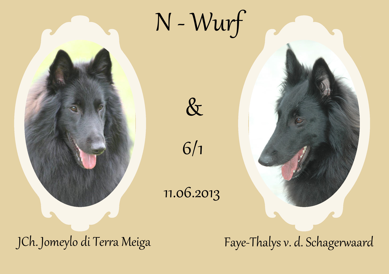 N-Wurf.jpg