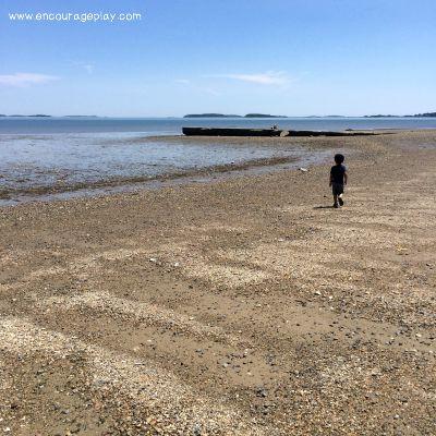 Running on the beach chasing seagulls.jpg