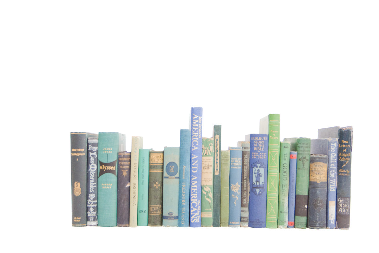 (B-033) BLUE + GREEN BOOK COLLECTION