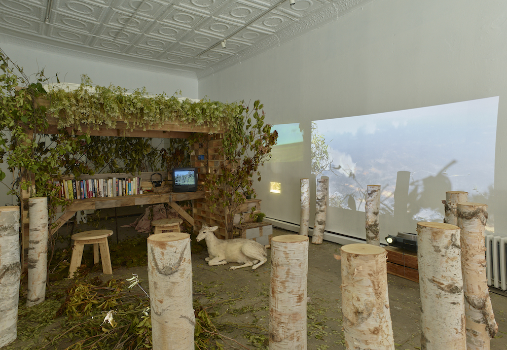 Allison Janae Hamilton_Wonder Room_Wide Side View.jpg
