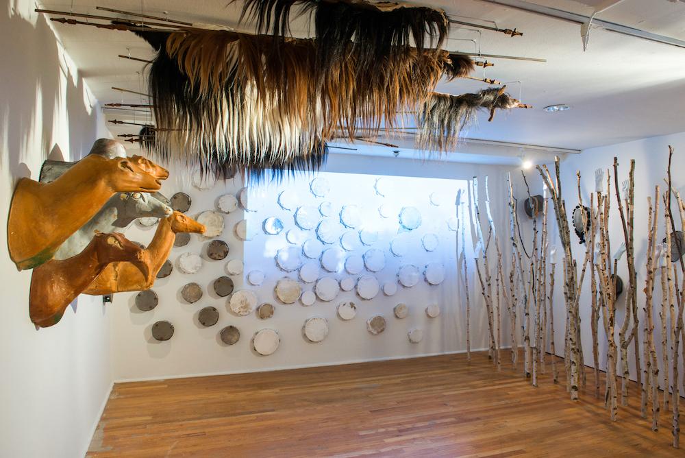 Allison Janae Hamilton - Foresta - Studio Museum in Harlem -1.jpg
