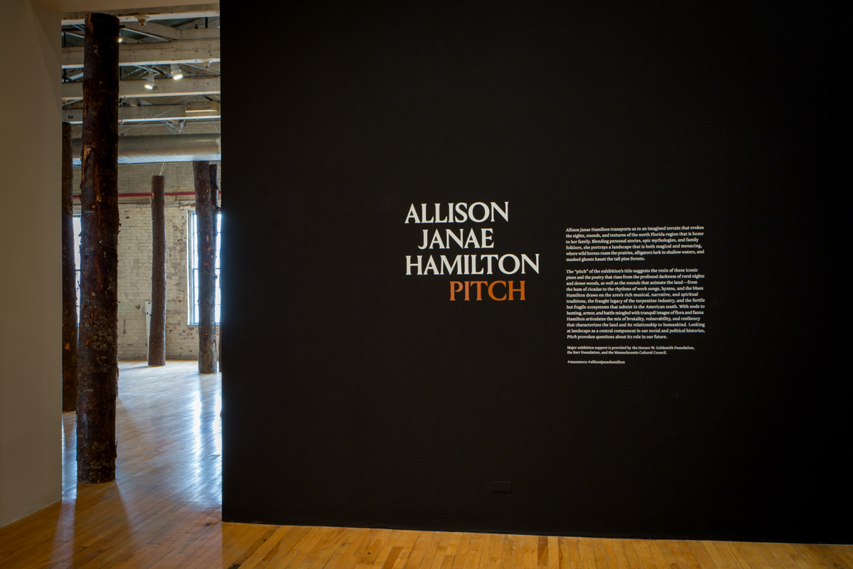 Allison Janae Hamilton - Pitch - MASS MoCA53.jpg
