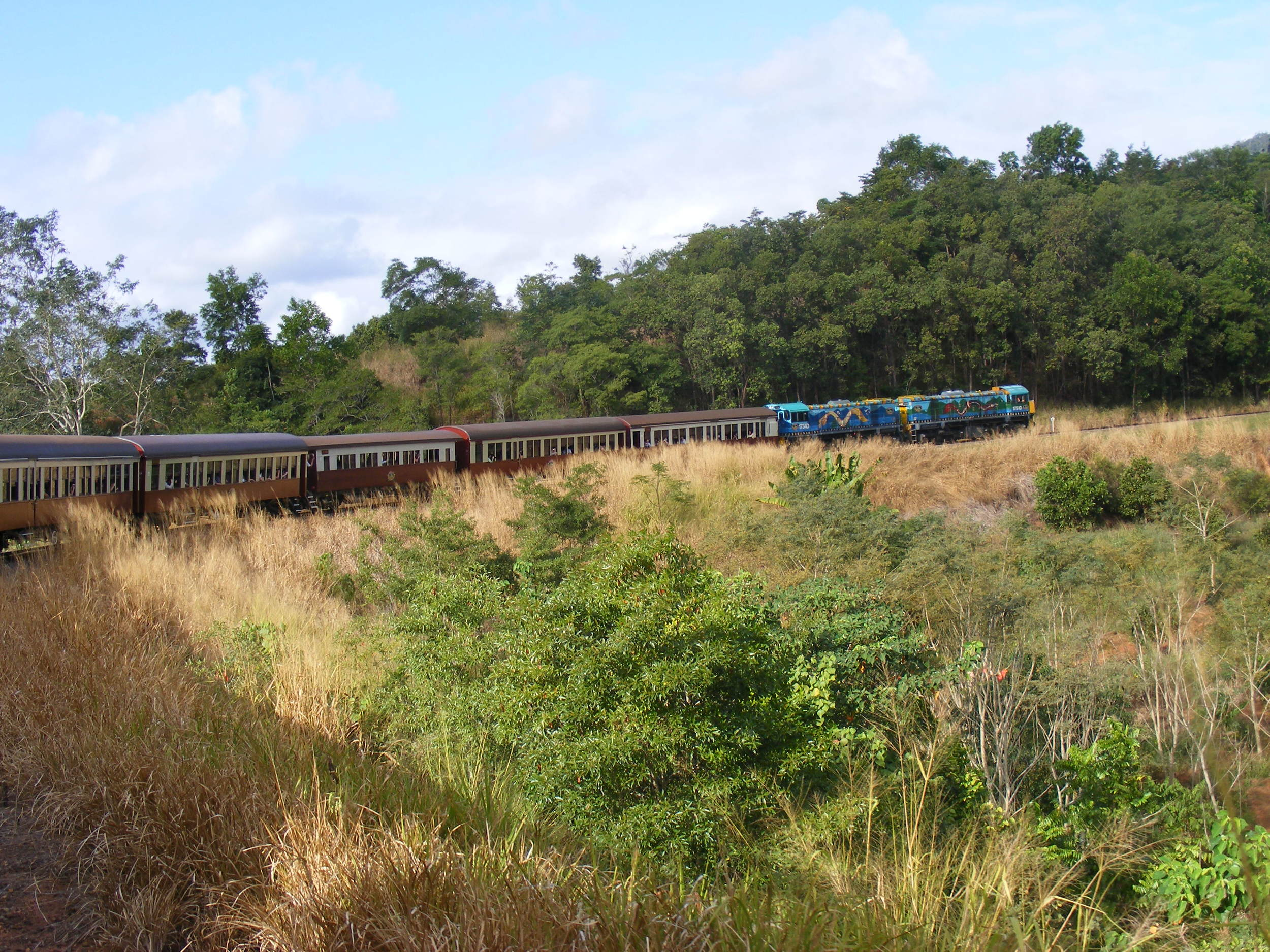 Train through the rainforest