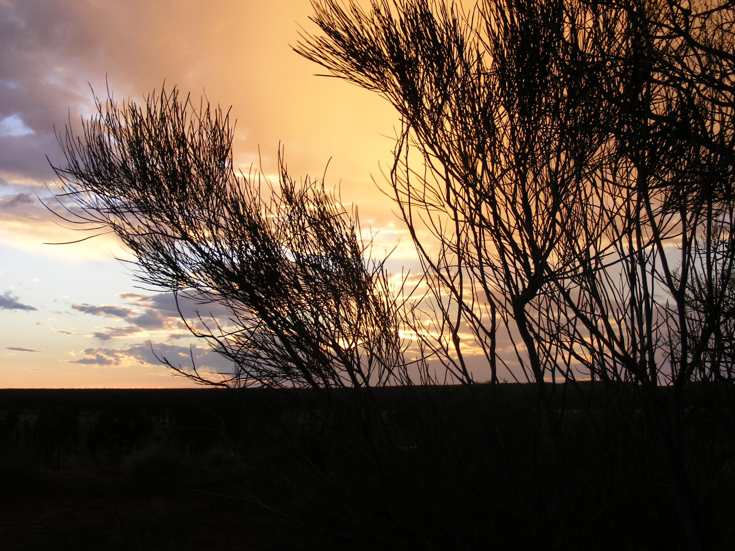 "Sunset at Ayers Rock, preparing for a dinner outdoors and a chat about the stars beginning with the ""Southern Cross""."