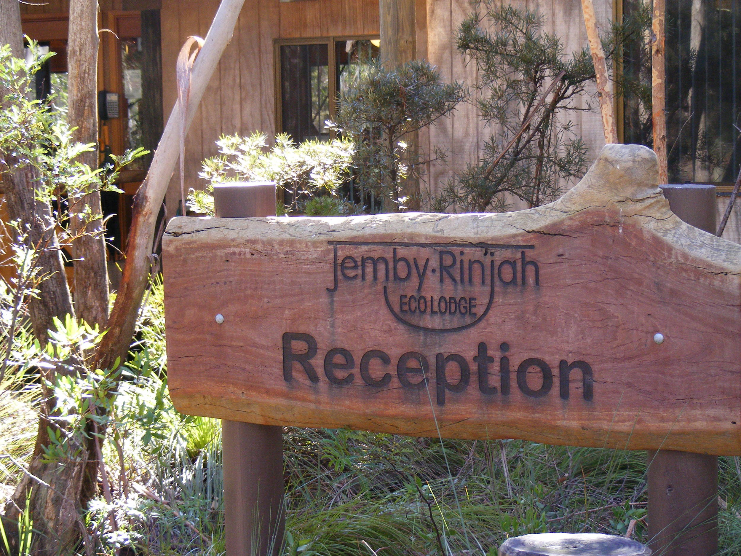 Named after the famous Jemby Rinjah parrot.