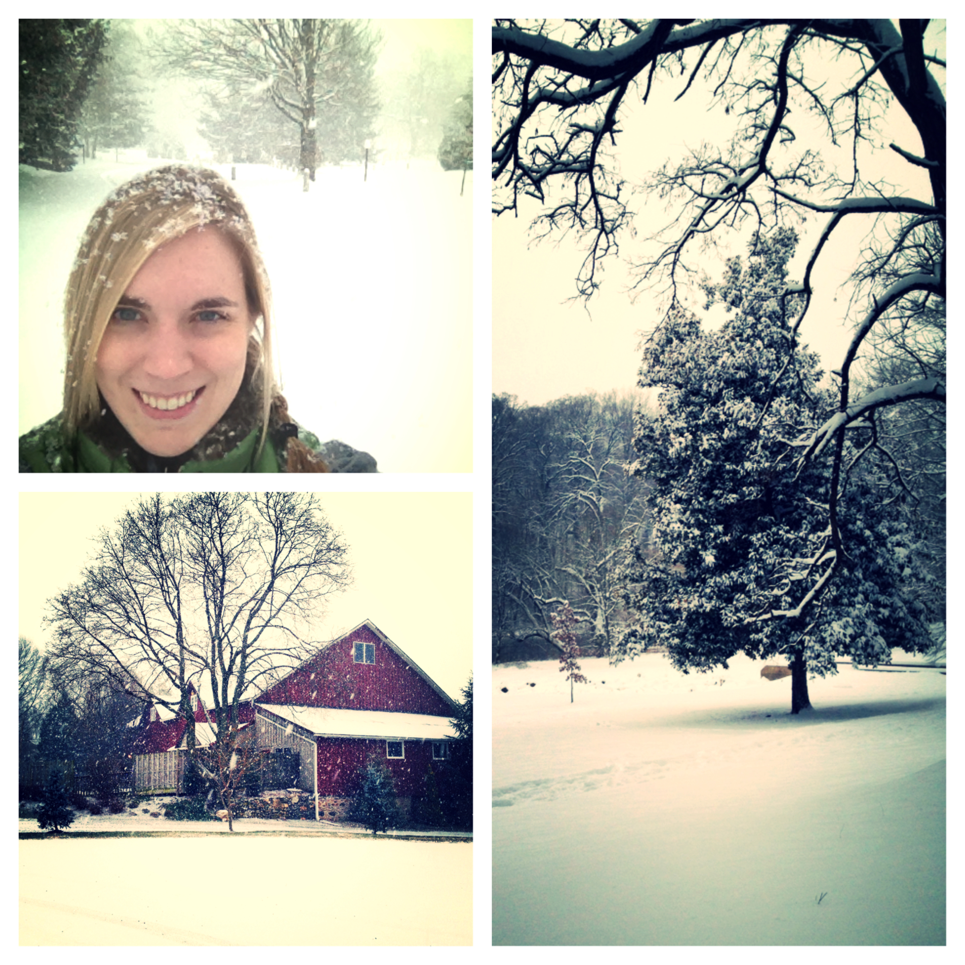 My snow day, views from winery (bottom left) and the park near my house!