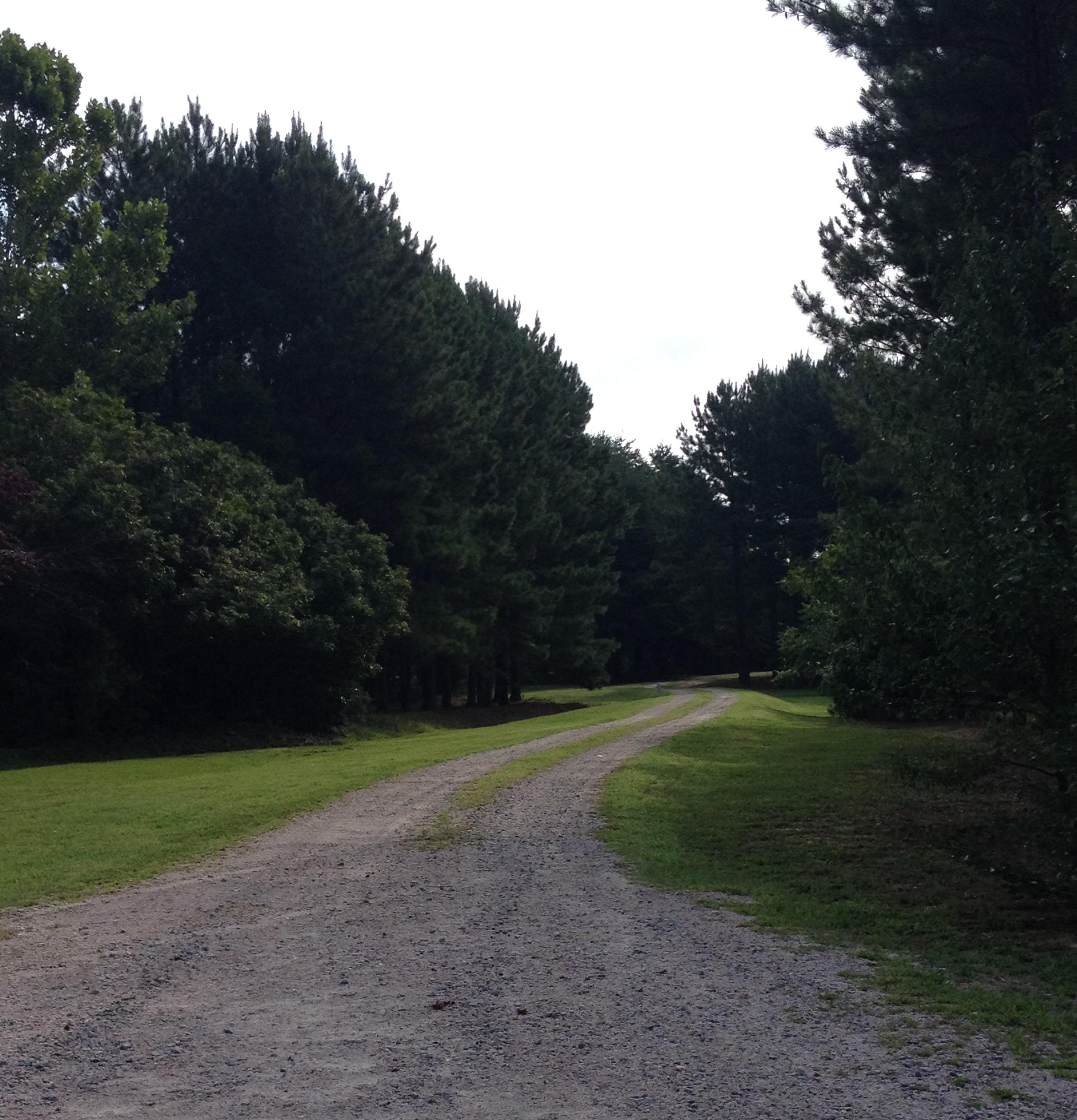 driveway 8.3.14.jpg