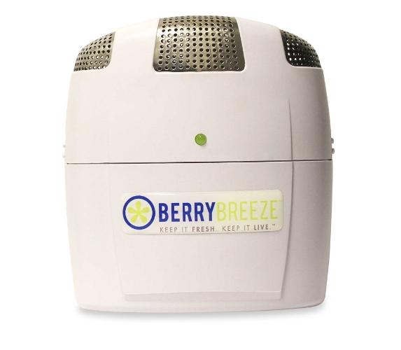 Berry Breeze.jpg