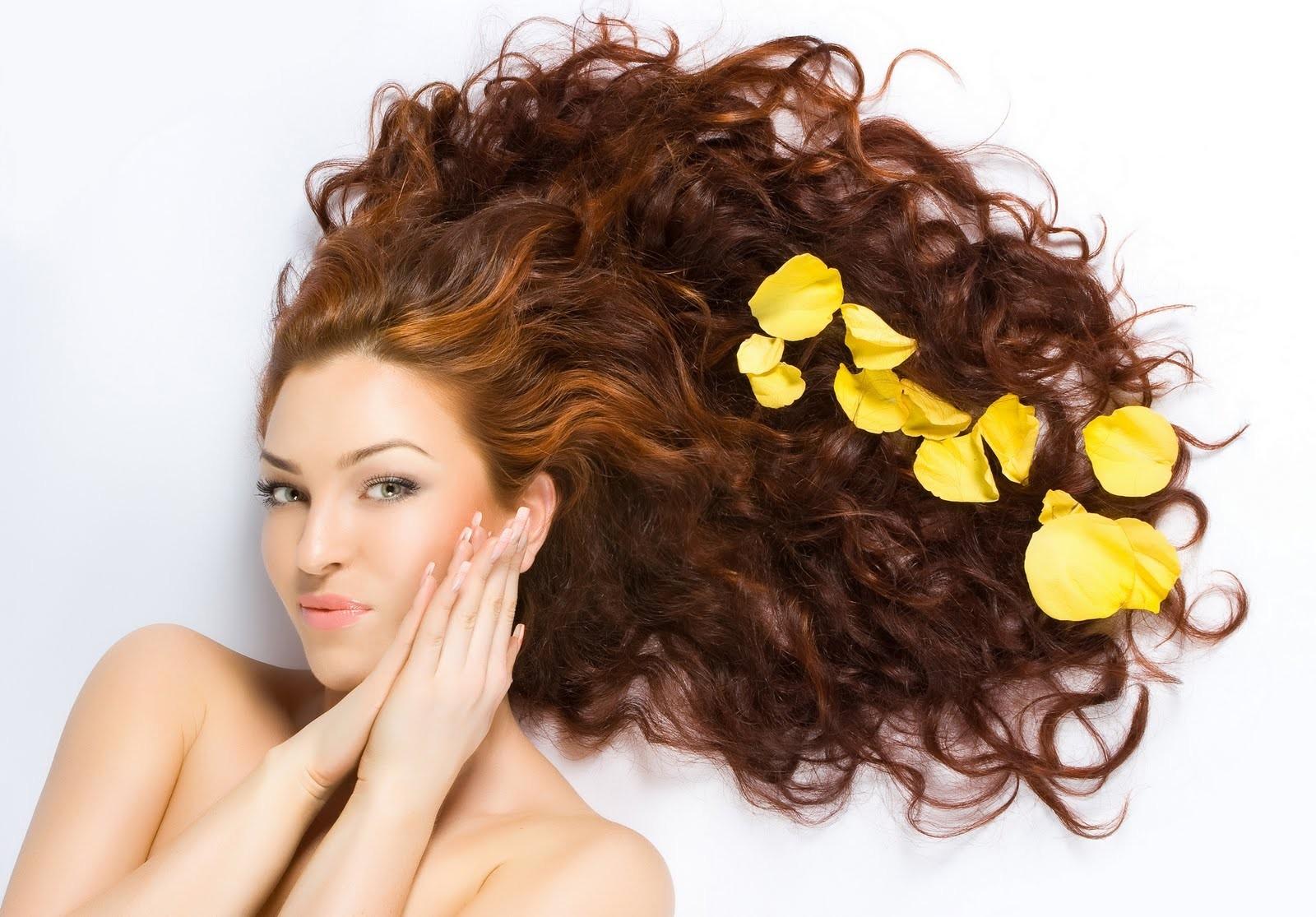 Fall Haircare Guide.jpg