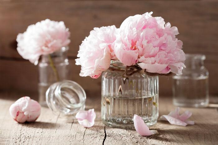 Posh Beauty Blog's Favorite Things - August 2019