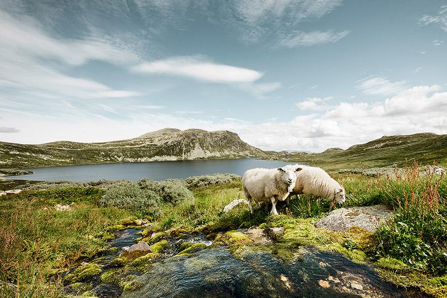Norway_20