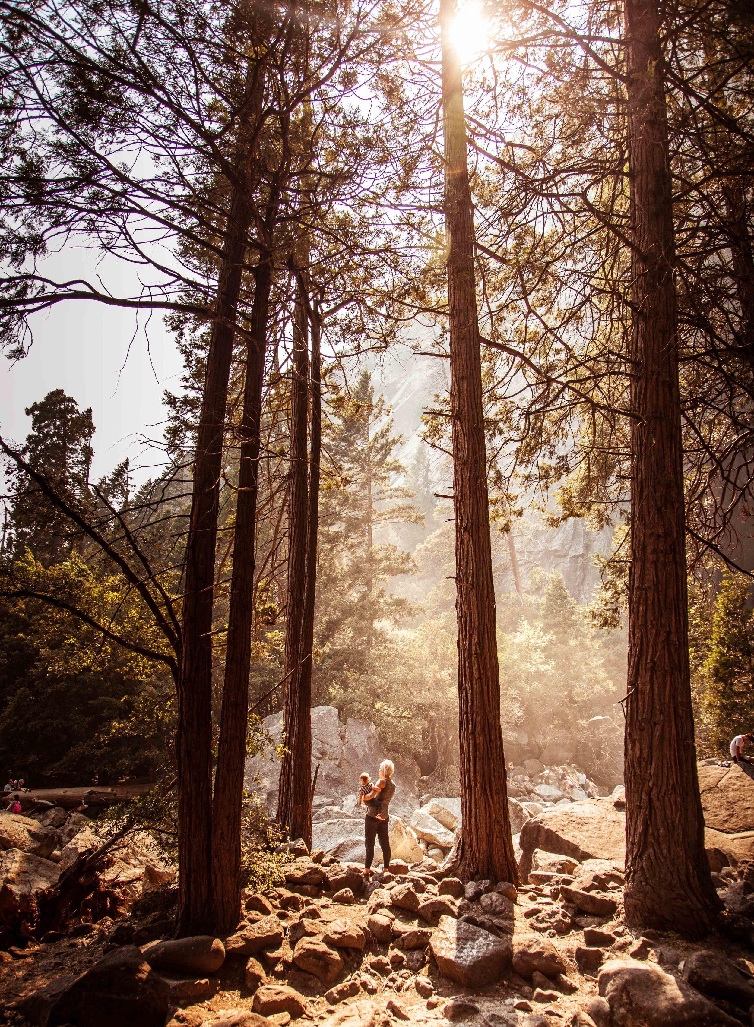 Yosemite (3 of 27).jpg