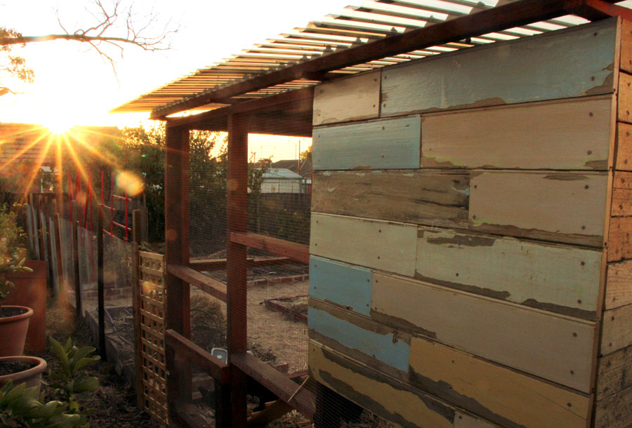 Good looking chook house made with salvaged timber.
