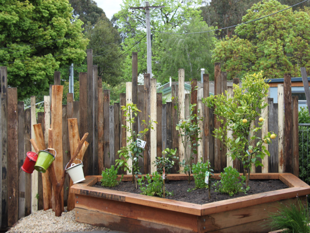Canberra Grammar's Northside campus landscape design is full of recycled timber. The vegetable garden fence clad with Thor's Hammer eclectic cladding.