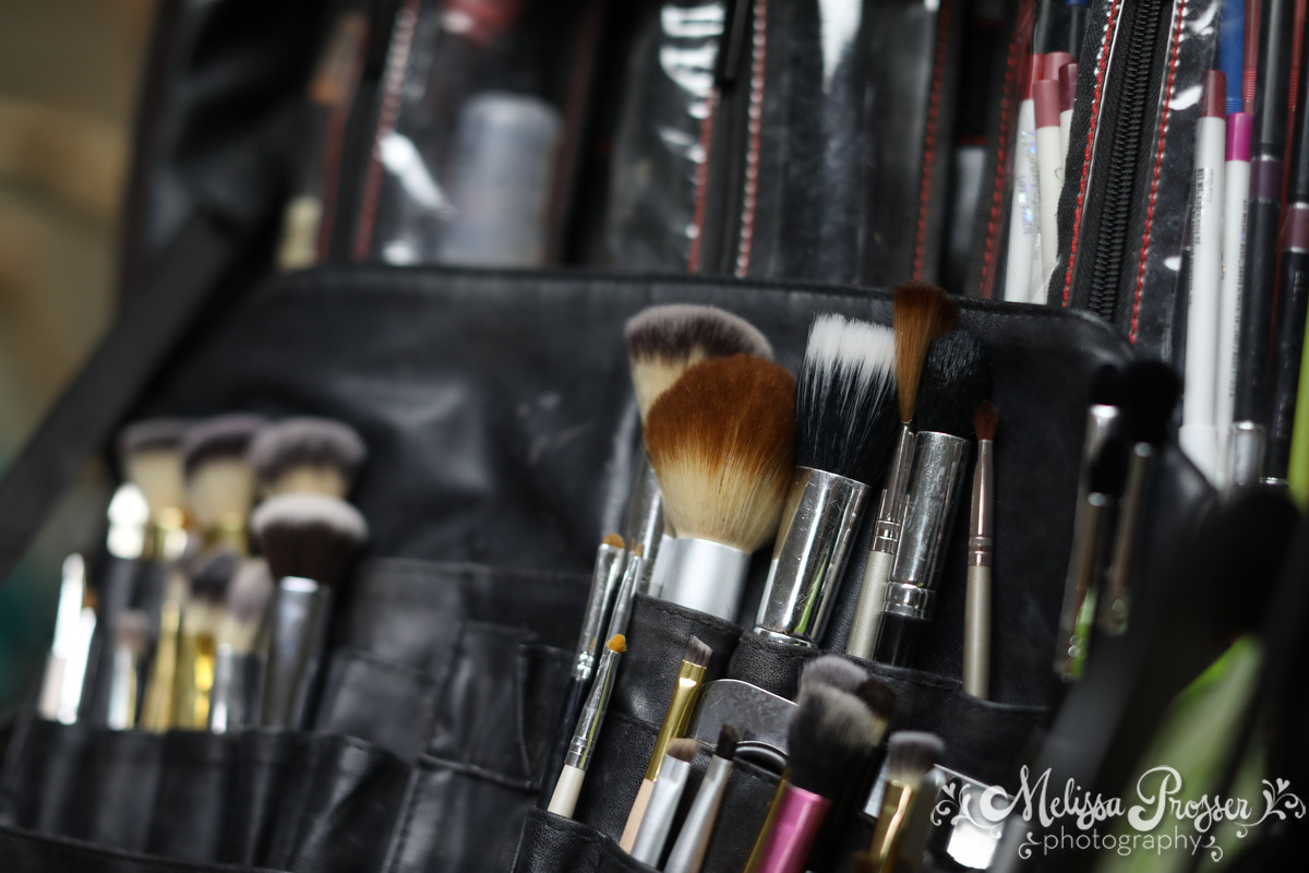 Makeup Brushes and Kit