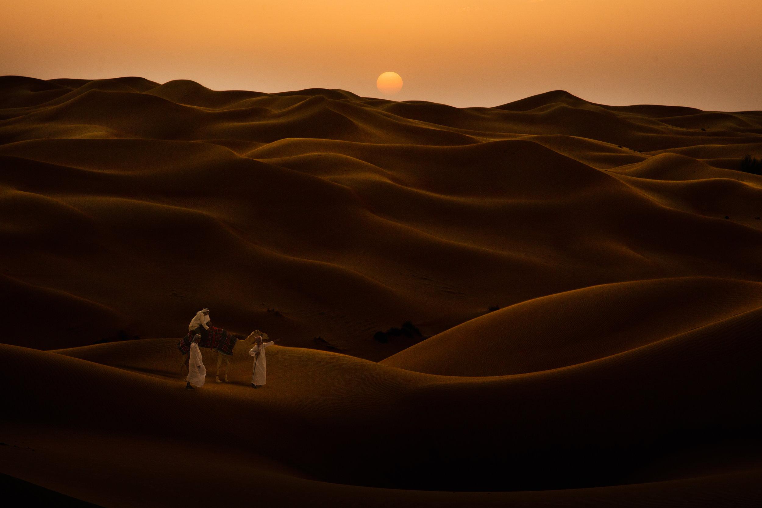 01-Oppener_camel_A98A8092-Broach-Photo.jpg