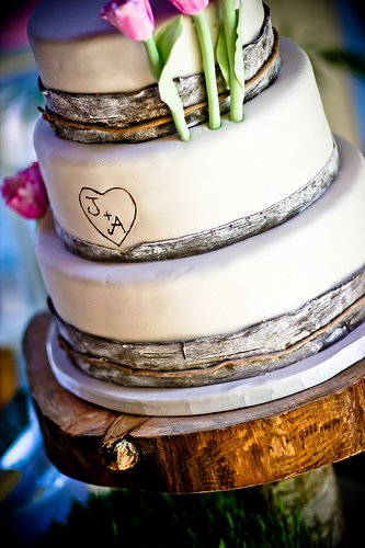 """Birch Bark Wedding Cake - We love the detailing of the bark """"band"""" on the cake layers as well as the initials of the couple and the wooden cake base/tree trunk."""