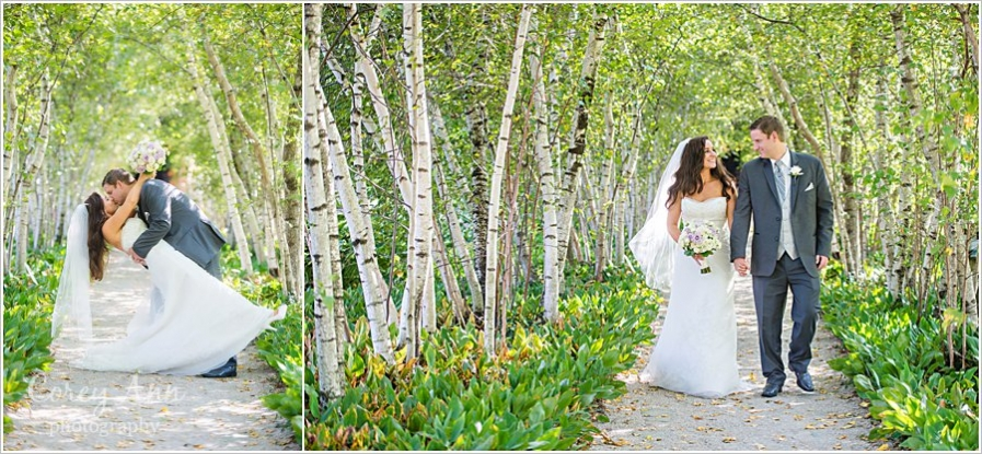 Natural Birch Tree Backdrop for Bride and Groom - If you are lucky enough to be surrounded by the natural beauty of birch trees, this would make a great photo op!