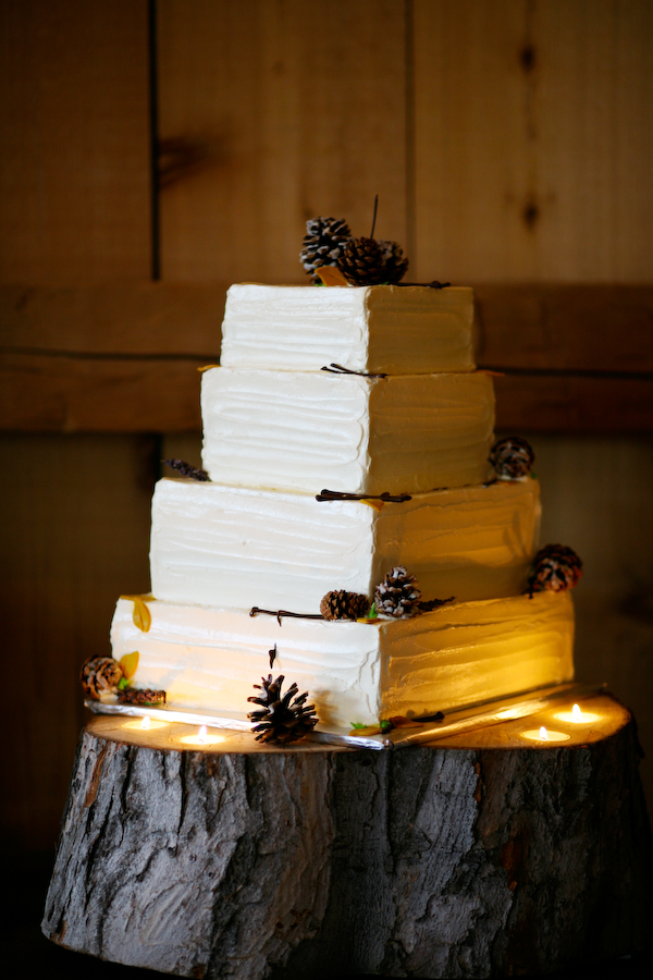 Pine Cone Wedding Cake - This rustic cake has a modern edige with the square shape and then takes a rustic turn with the tree steump cake stand and the scattered twigs and pine cones.