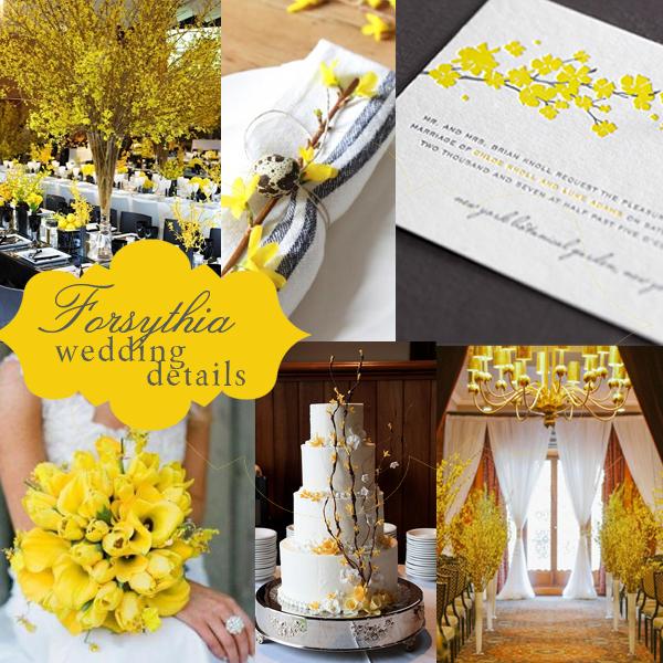 forsythia wedding details.jpg
