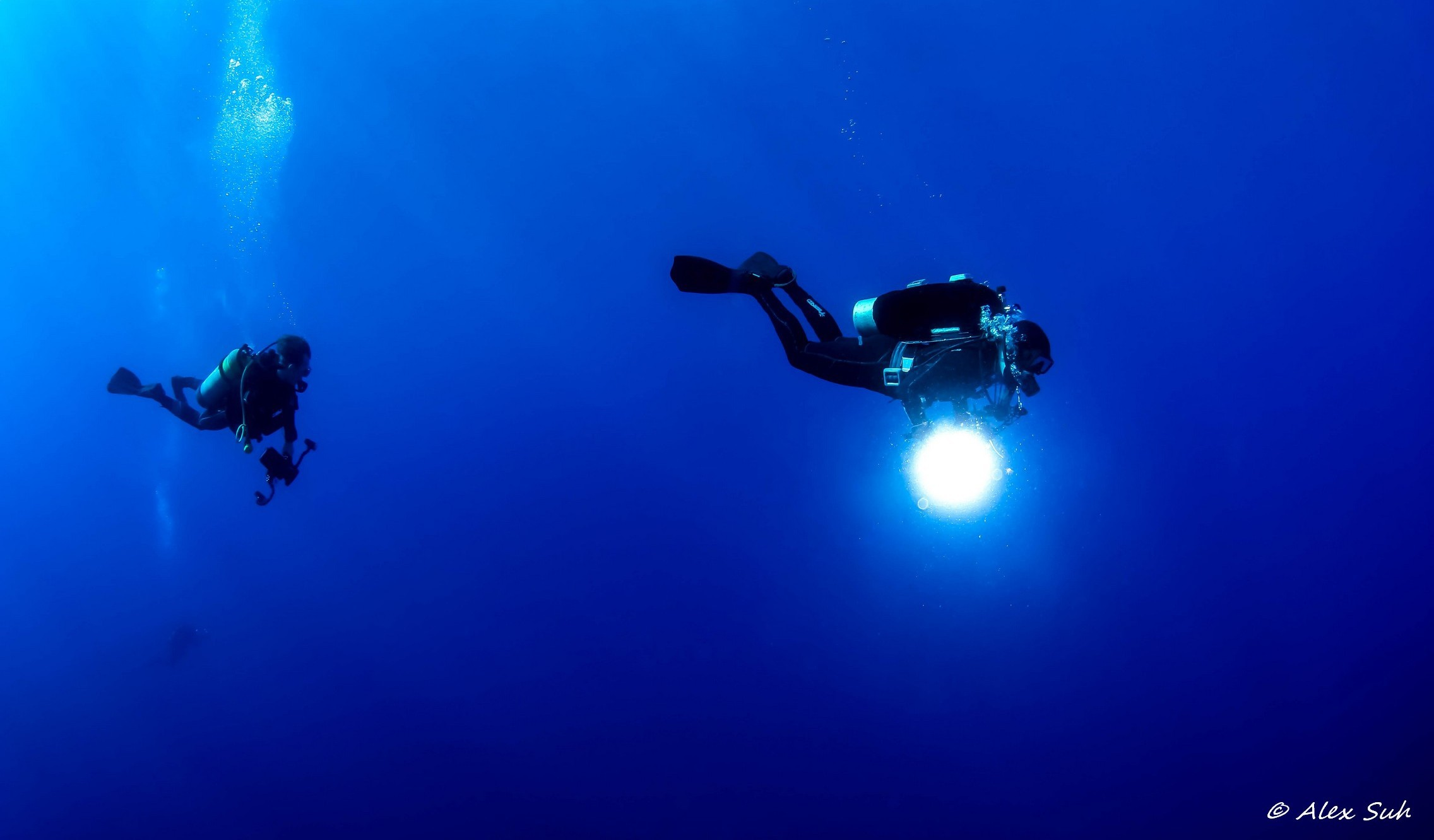 Divers on the Search
