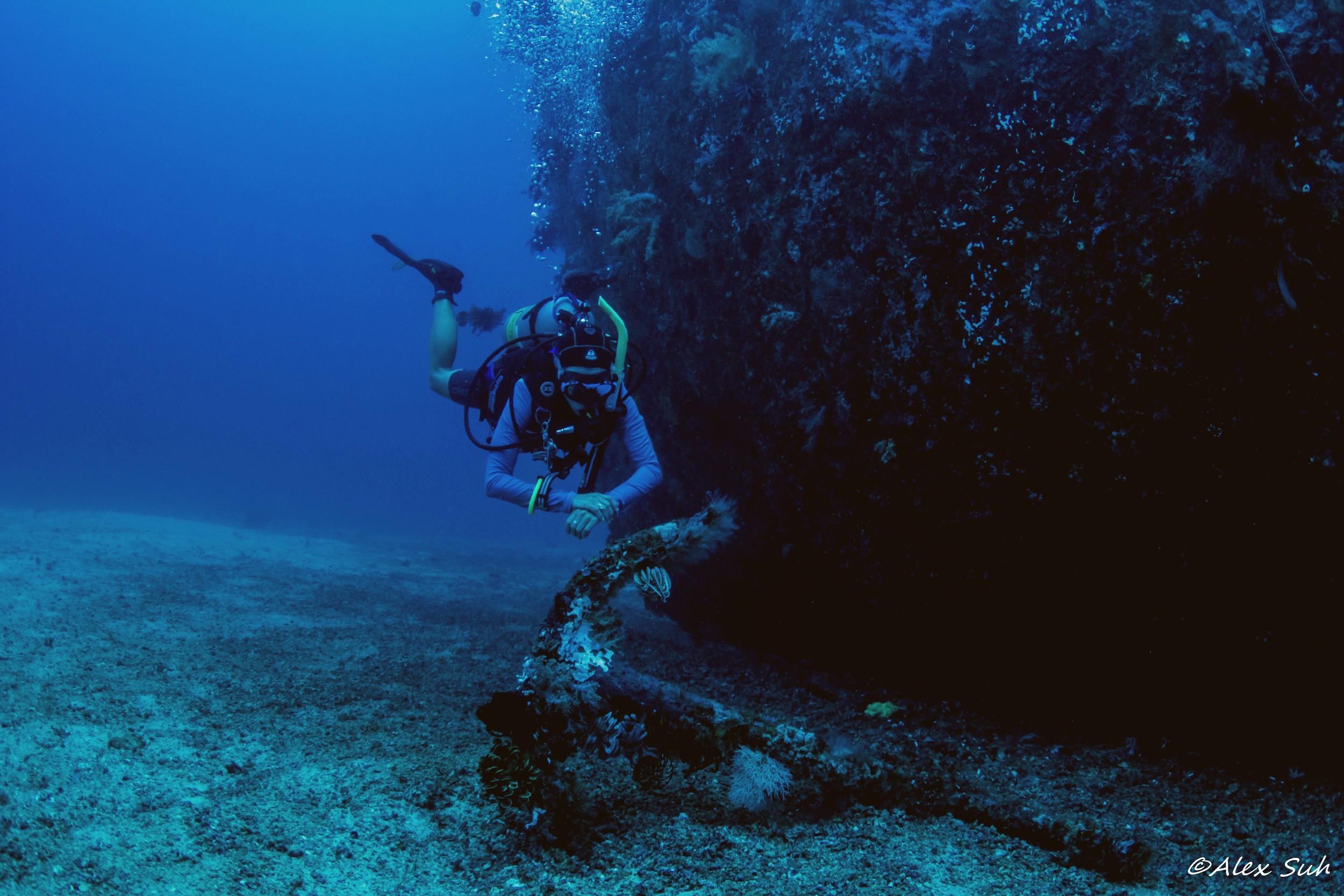 Anchor of the Alma Jane Wreck