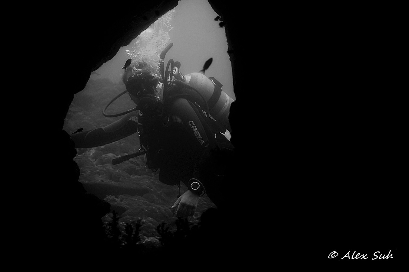 BW  Cave Entry