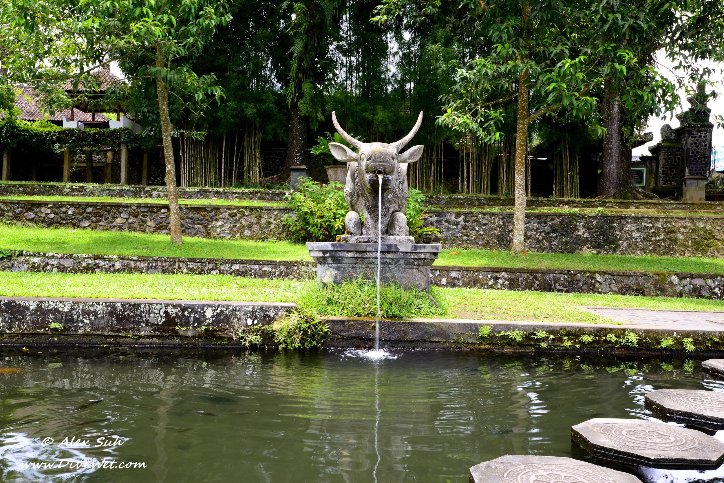 Bali Water Buffalo Fountain.jpg