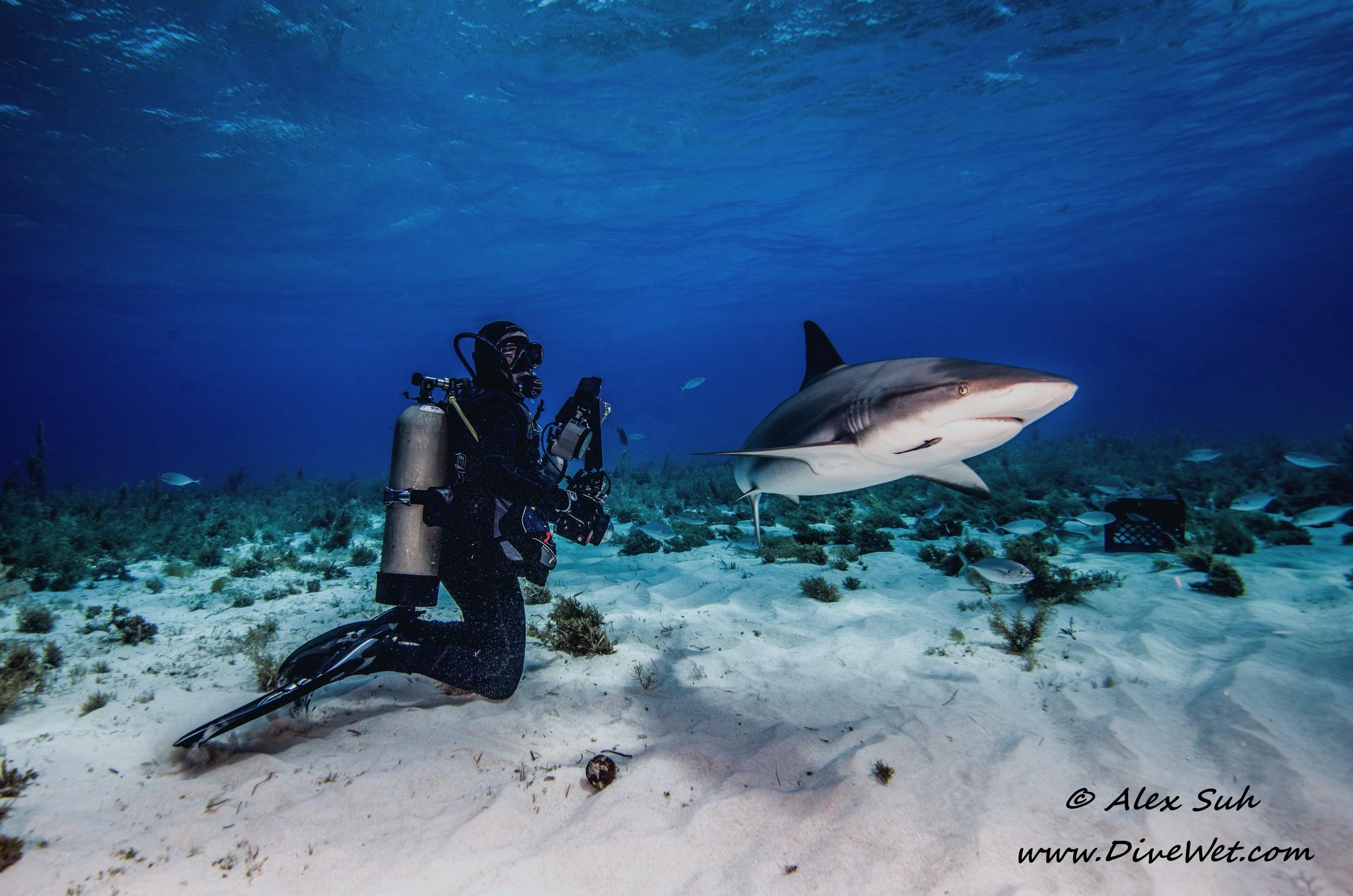 Richard w Reef Shark.jpg