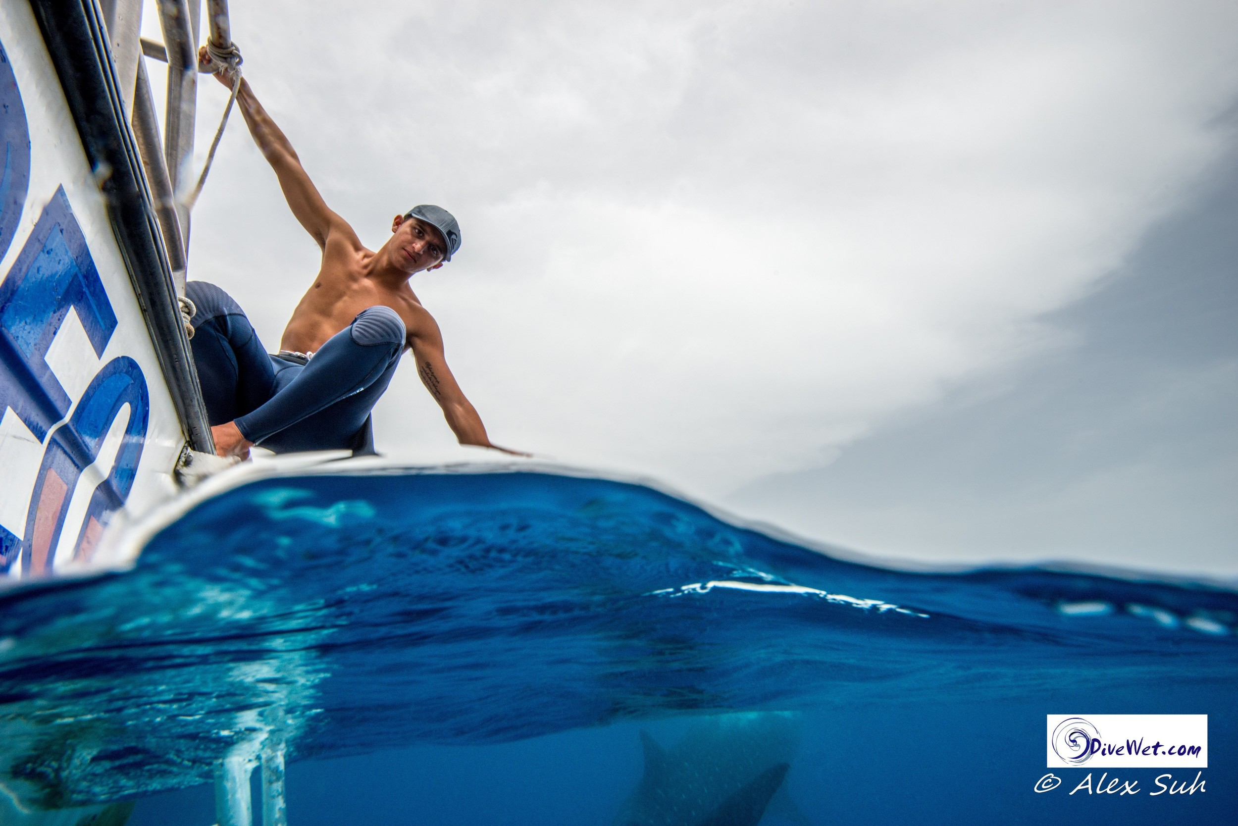 Over Under of Edoardo While Whale Shark Passes