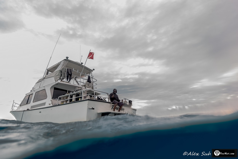 Over Under Shot Thresher Boat - Capt. Reynold Butler Thumps Up