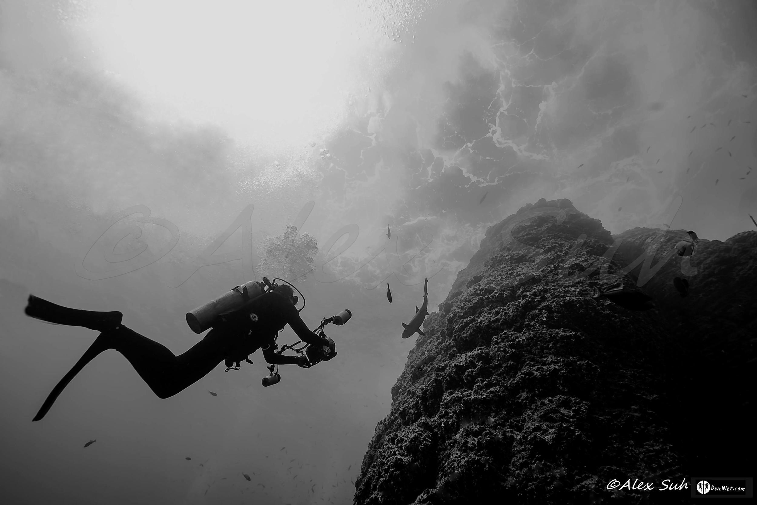 Underwater Photographer Ascending Roca Pardita, Mexico