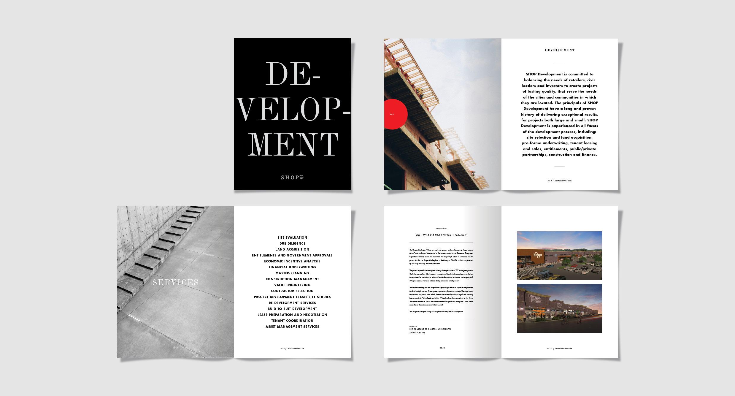 Brochure / Development Services