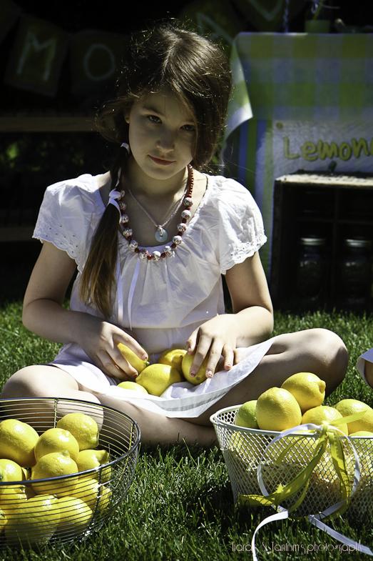 lemonminis (26 of 1).JPG
