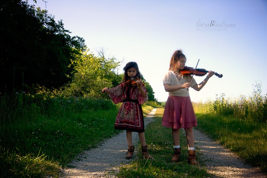 Tartini Professional Violin