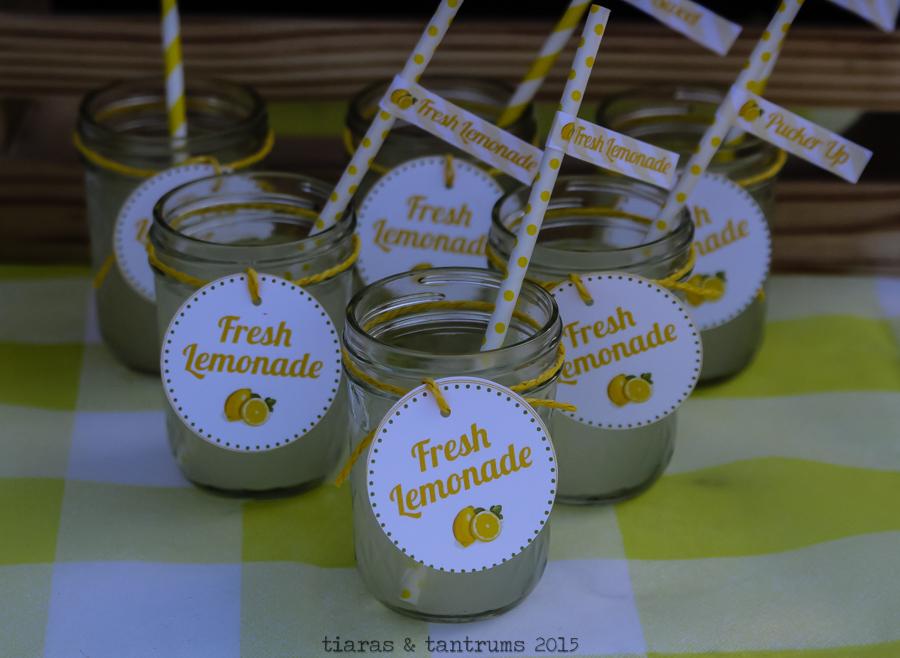 Lemonade Stand! Themed Mini Photo Session