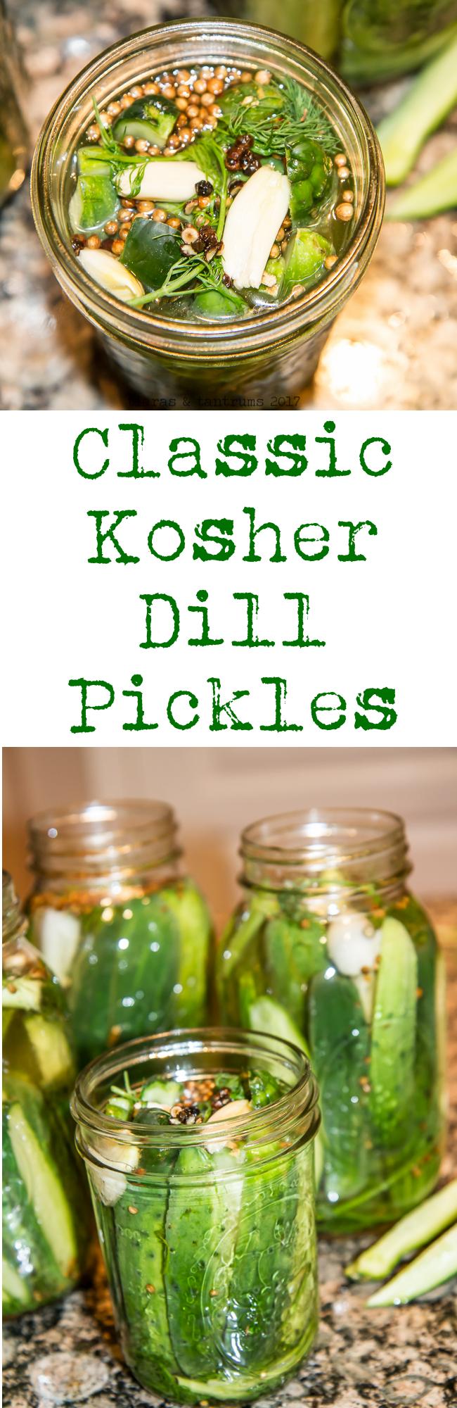 Refrigerator Kosher Dill Pickles Recipe