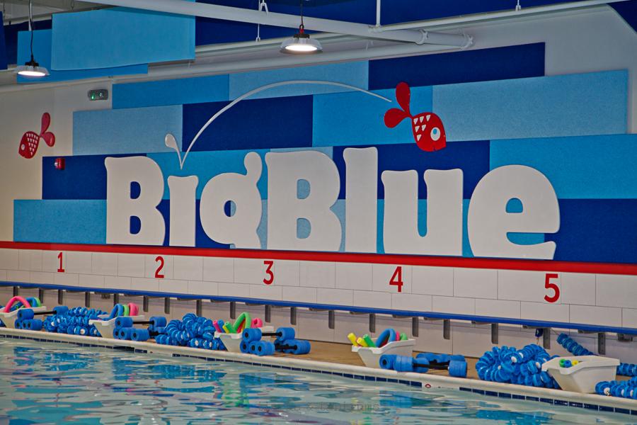 Swim Lessons and Big Blue Swim School