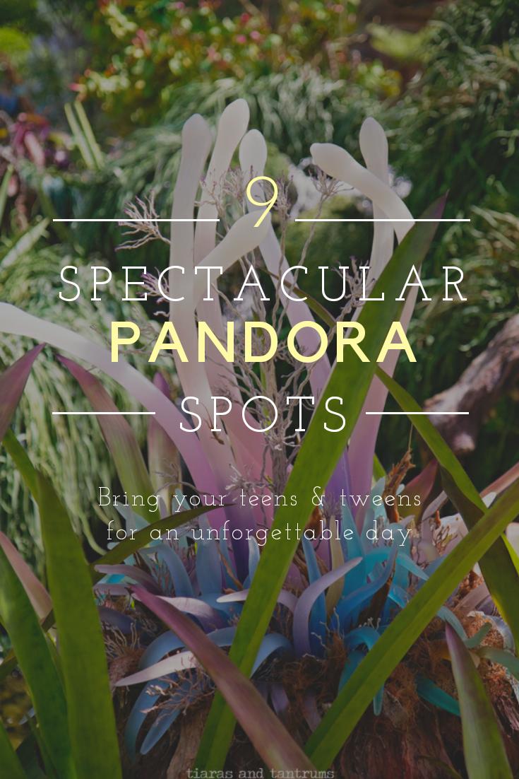 TOP 9 THINGS TO DO at Pandora