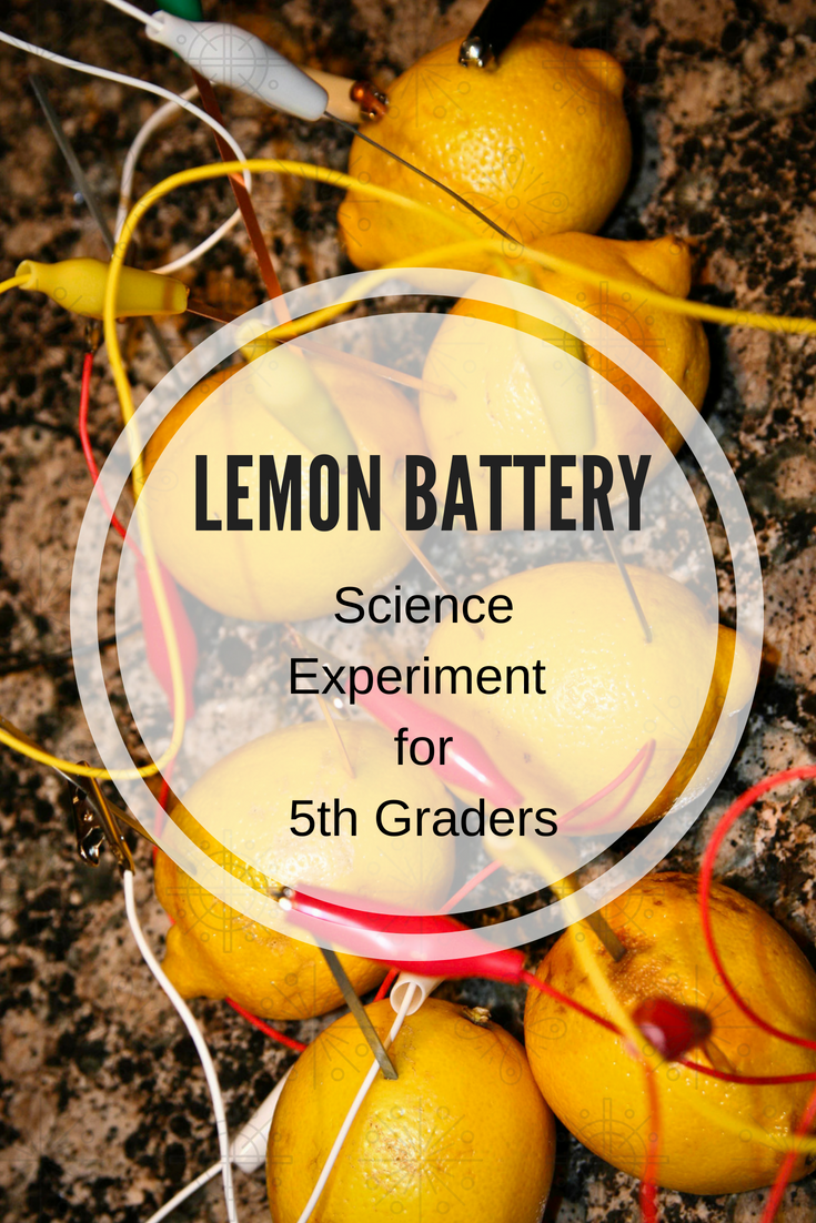Lemon Battery Science Experiment