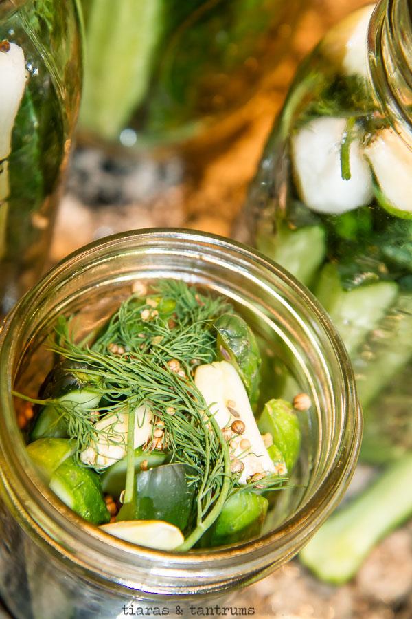 Ultimate Classic Dill Pickle Recipe #classicdillpickle #dill pickles #dillpicklerecipe #classicpicklerecipe #classicdills #canningrecipe #canningdillpickles #canningpickles #homemadedillpickles