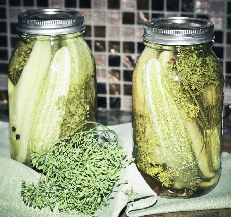 Ultimate Classic Dill Pickle Recipe #classicdillpickle #dill pickles #dillpicklerecipe #classicpicklerecipe #classicdills #canningrecipe #canningdillpickles #homemadedillpickles #canningpickles