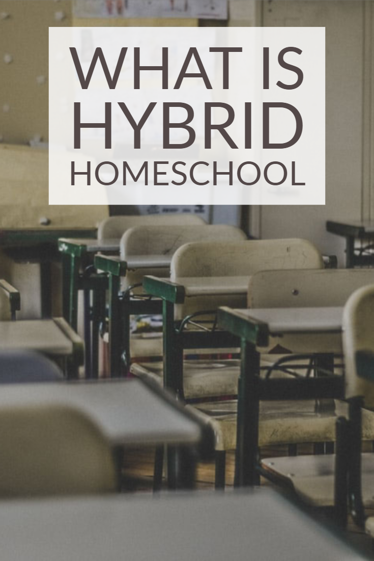 Hybrid Homeschooling Facts #hybridhomeschool #hybridhomeschooling #hybridhomeschoolingfacts #homeeducating #homeschool #homeschooling