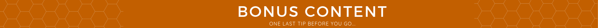 eisley-images-bonus-blog-content.jpg