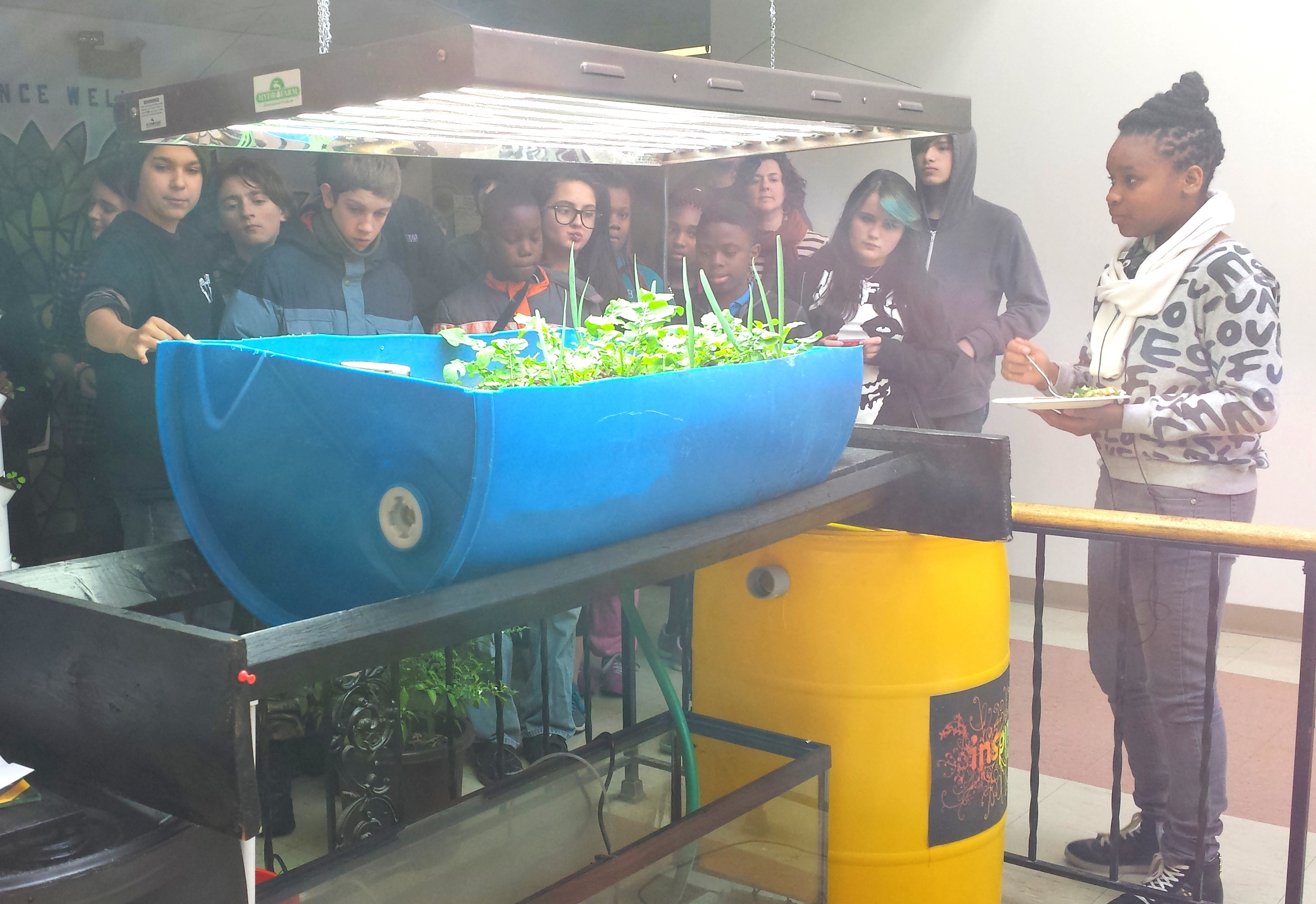 KI Ecocenter's aquaponics system; the students on the left are from KI's neighbor school, Project Libertas.